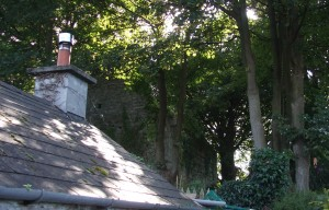 In the foliage is the remains of a tiny church. It is completely enclosed and can only be accessed from through the houses. It may have been the church that William John Burke was Baptised in...